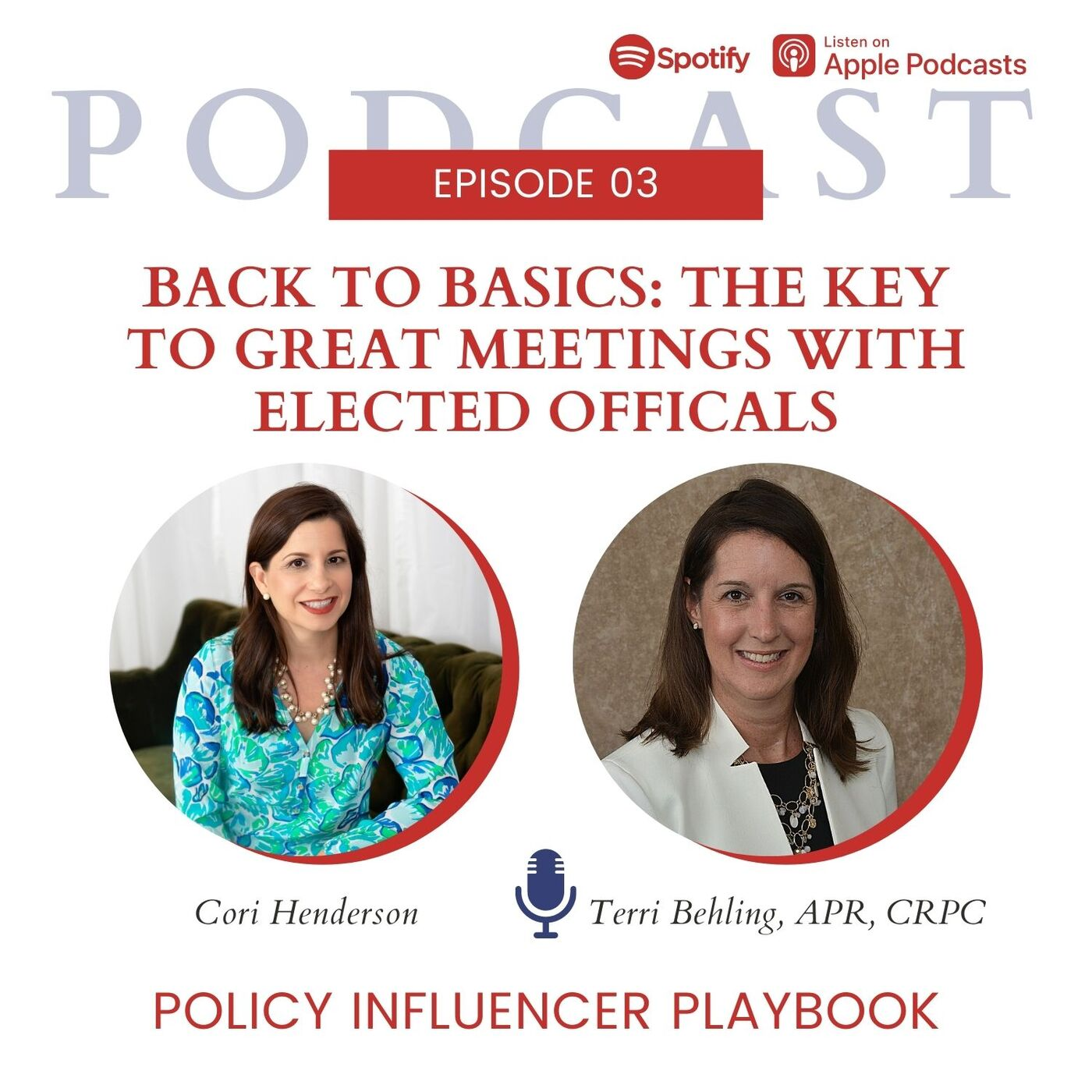 Back to Basics: The Key to Great Meetings with Elected Officials with Terri Behling