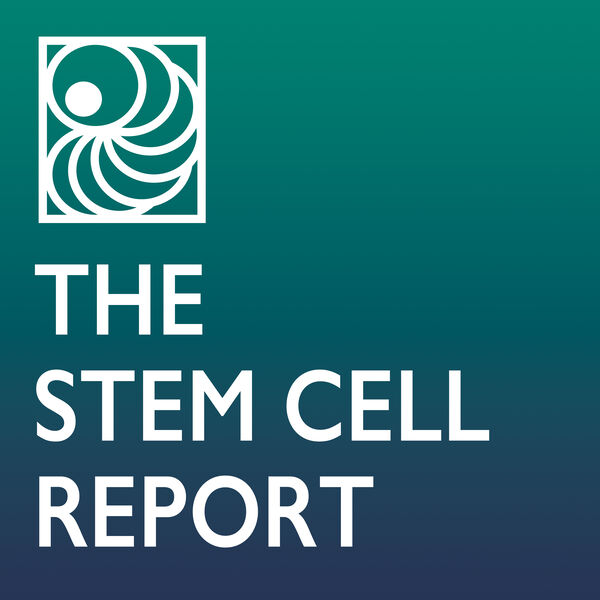The Stem Cell Report with Martin Pera Podcast Artwork Image