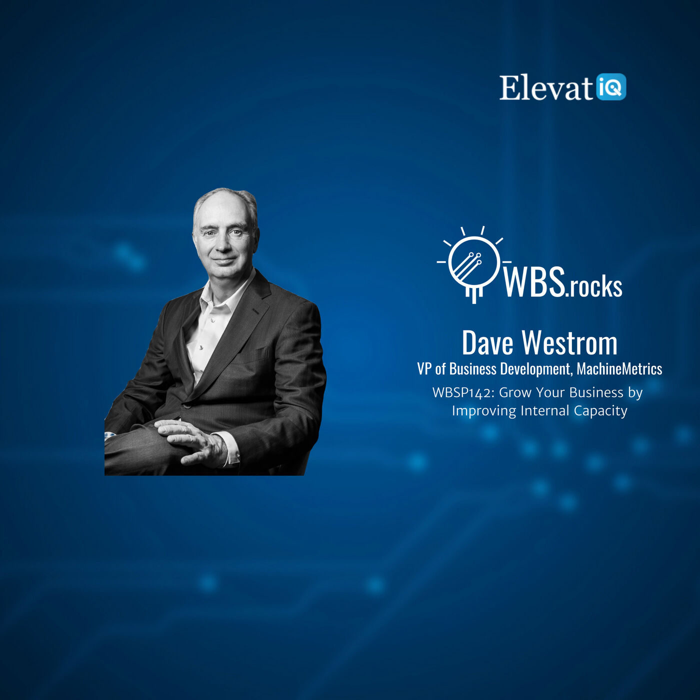 WBSP142: Grow Your Business by Improving Internal Capacity w/ Dave Westrom