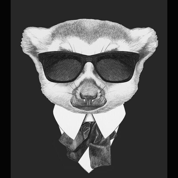 A Conspiracy of Lemurs Podcast Artwork Image