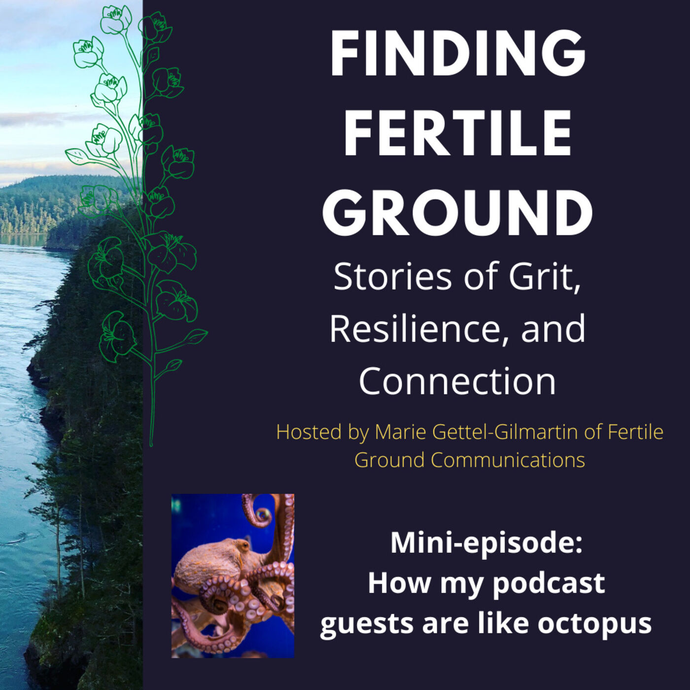 Mini-episode: How my podcast guests are like octopus