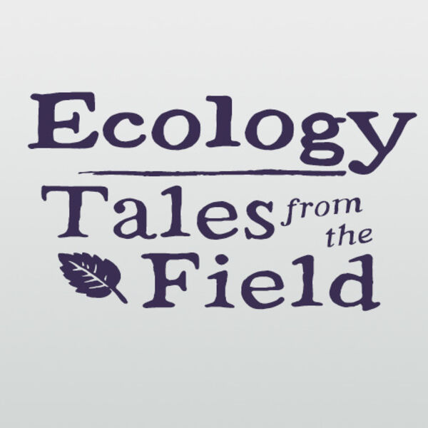Ecology - Tales from the field Podcast Artwork Image