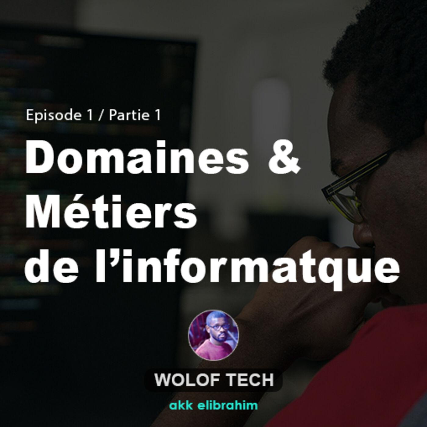 Domaines et métiers de l'informatique_Partie_02