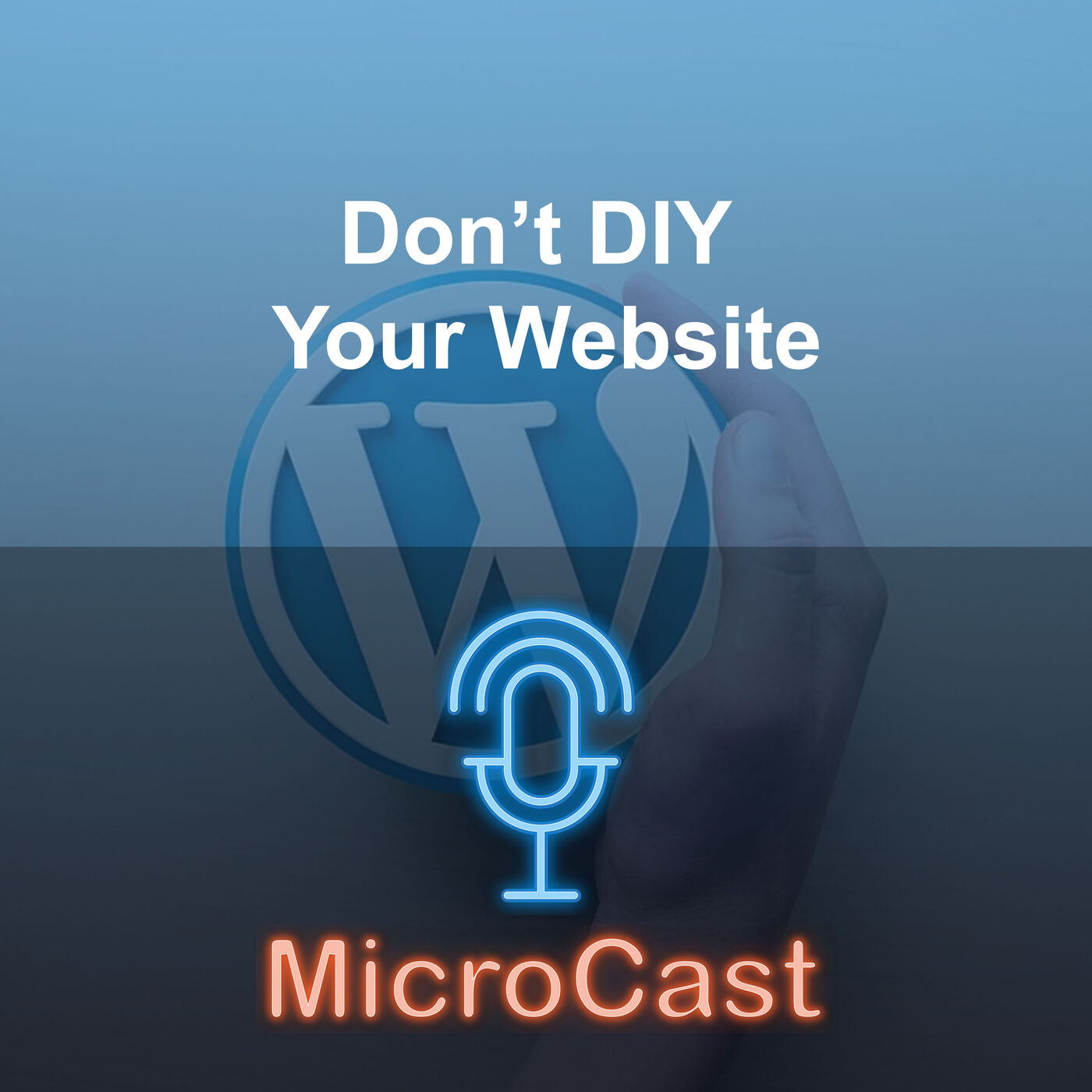 Episode 35 - Reasons not to DIY with Websites
