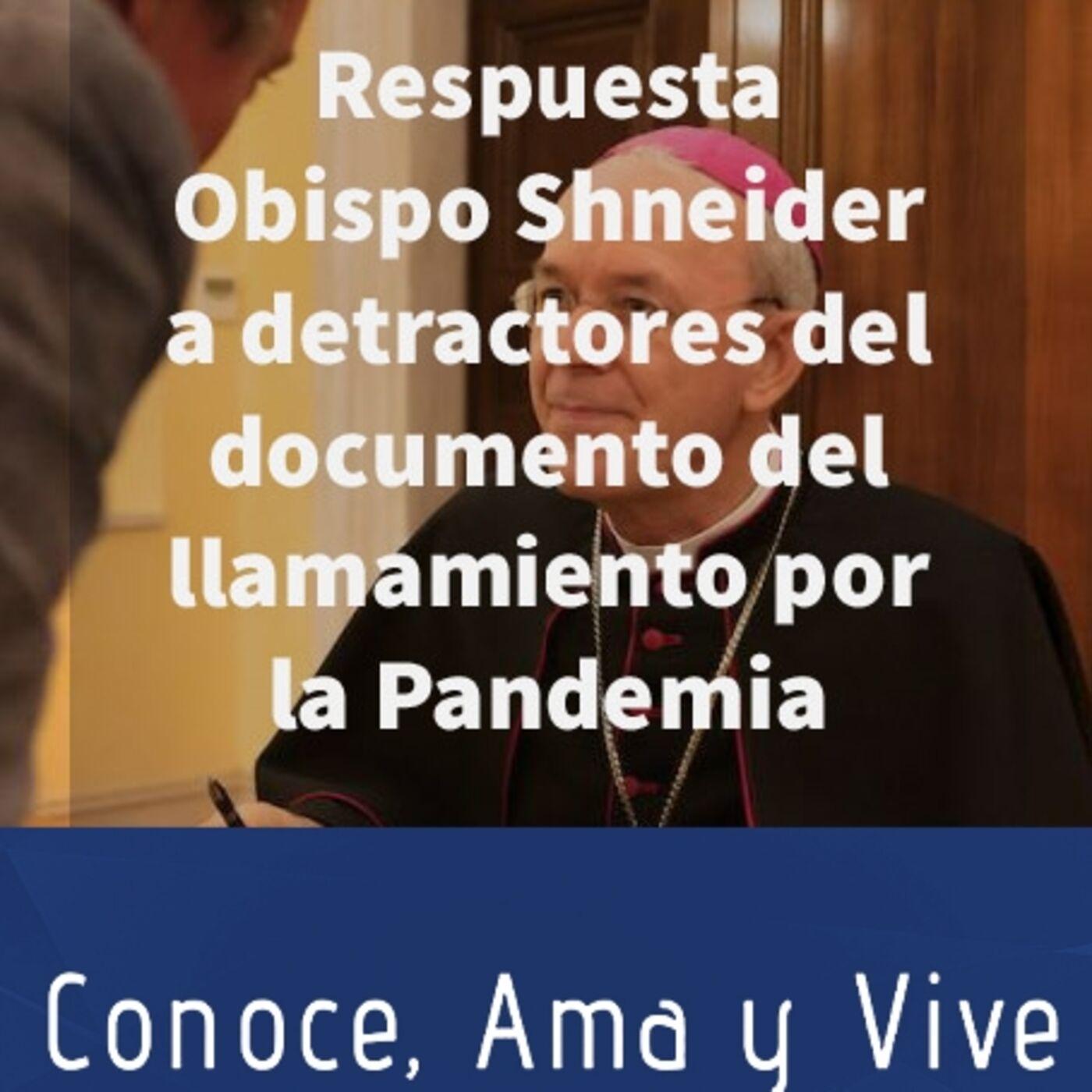 Episodio 261: 👊 Repuesta del Obispo Shneider a los detractores del documento del llamamiento por la Pandemia 🙏