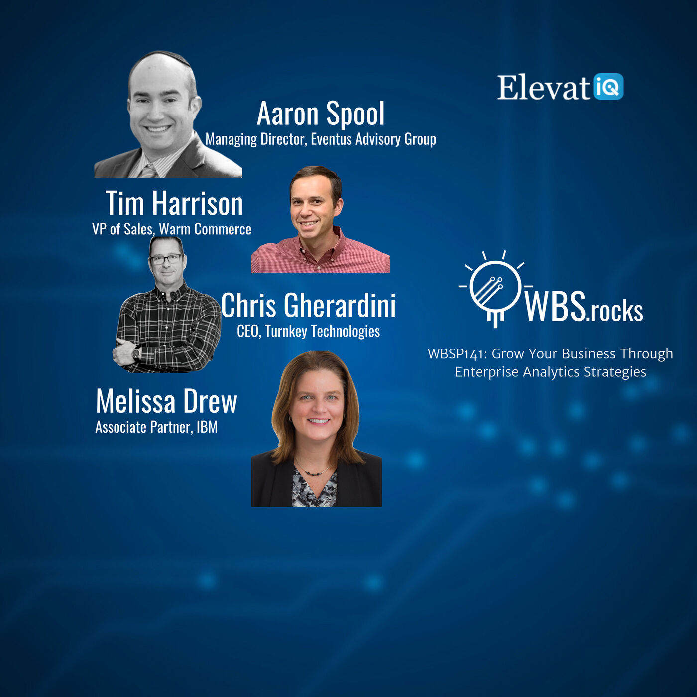 WBSP141: Grow Your Business Through Enterprise Analytics Strategies, a Live Interview w/ a Panel of Experts