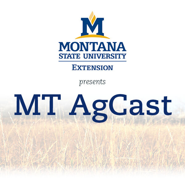 MT AgCast; Presented by Montana State University Extension Podcast Artwork Image