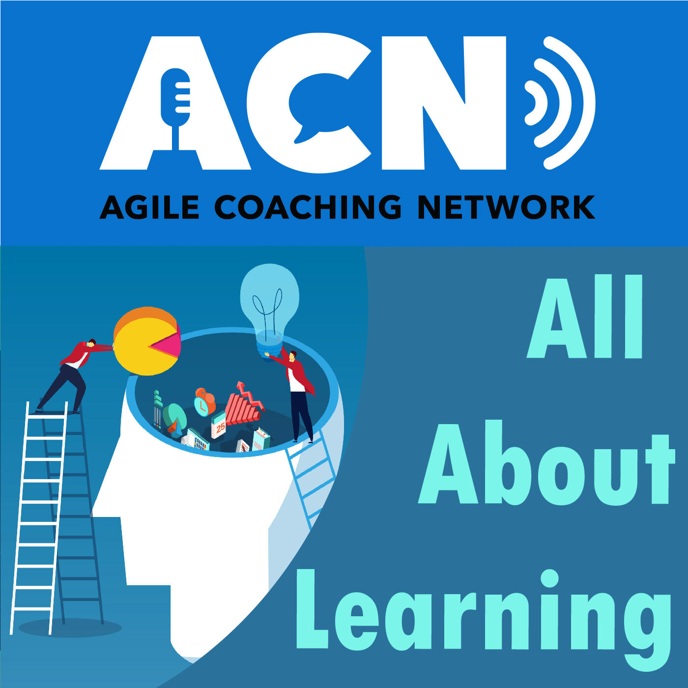 Team and personal learning, moving from scrum master to Agile coach, and moving to enterprise-level coach