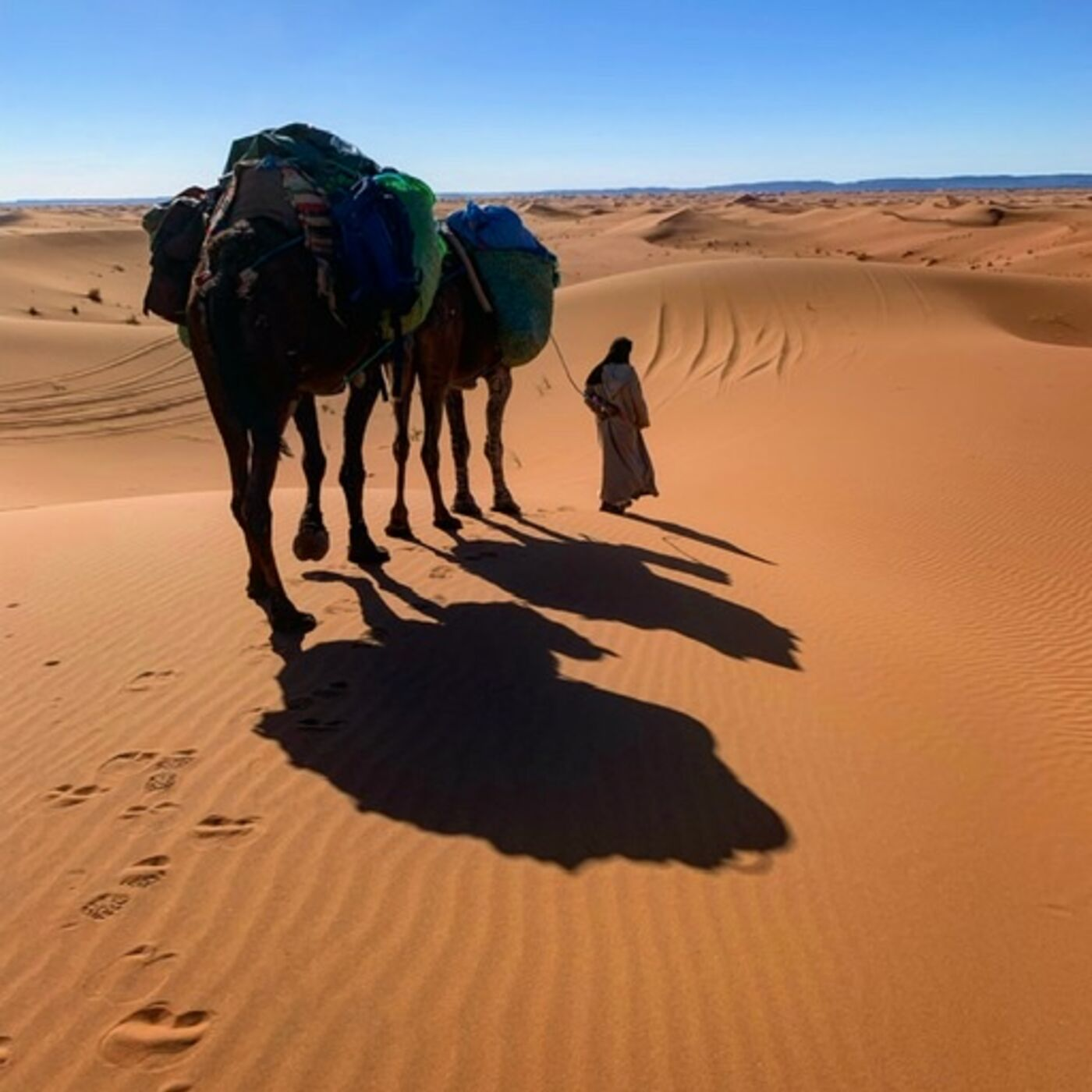 Walking with Nomads: 2,800-miles Across the Entire Length of Morocco with Explorer Alice Morrison