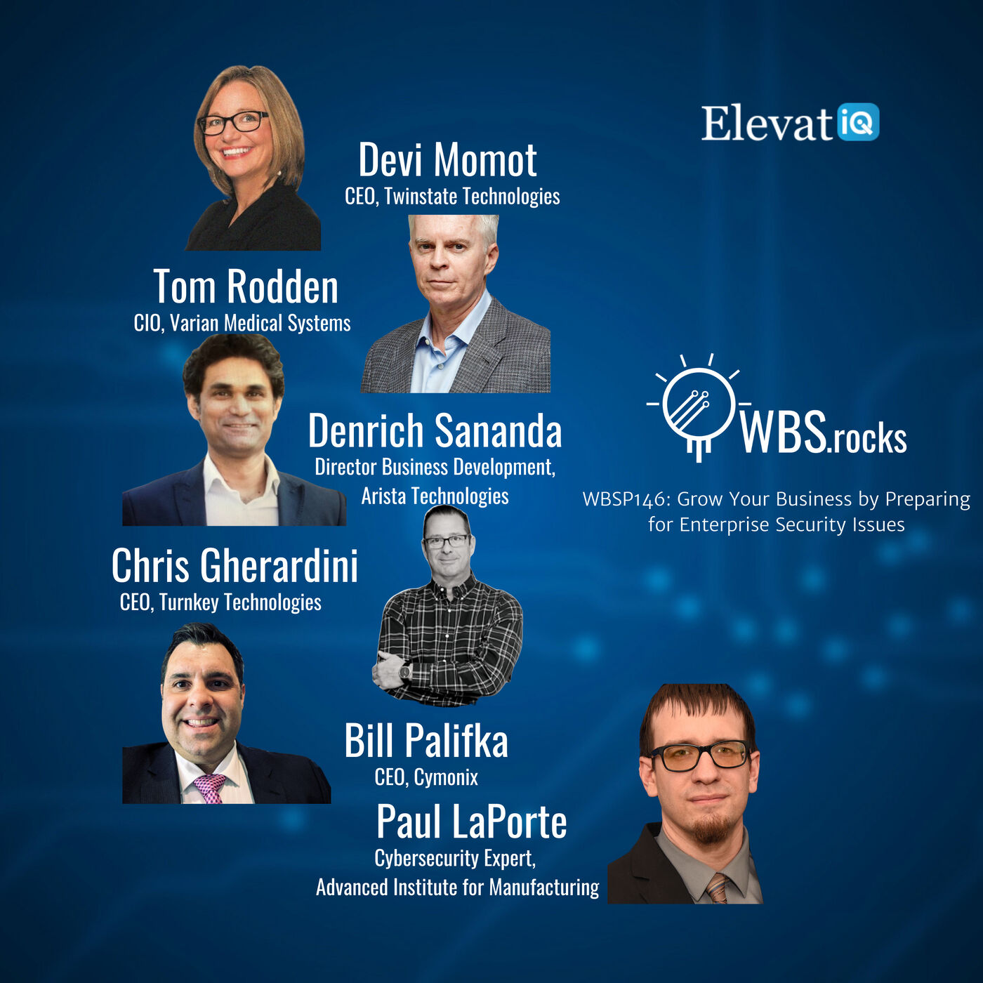 WBSP146: Grow Your Business by Preparing for Enterprise Security Issues, a Live Interview w/ a Panel of Experts