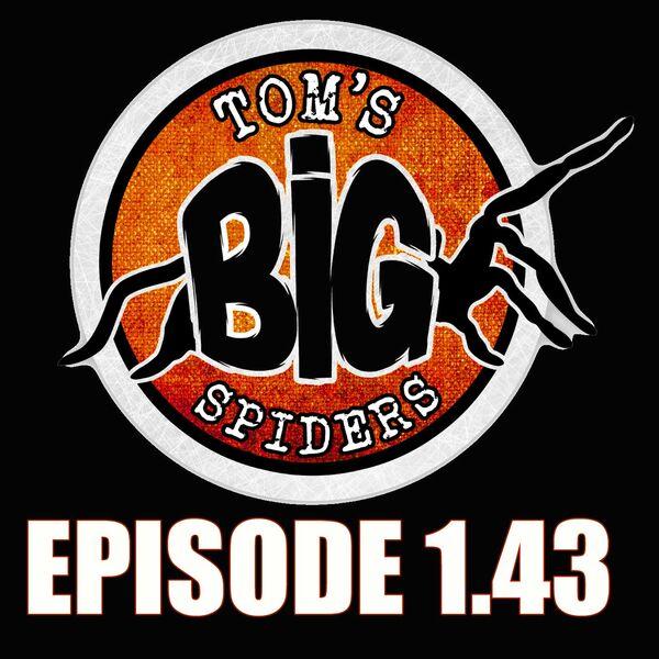 Tom's Big Spiders - Tarantulas and Inverts Podcast Artwork Image