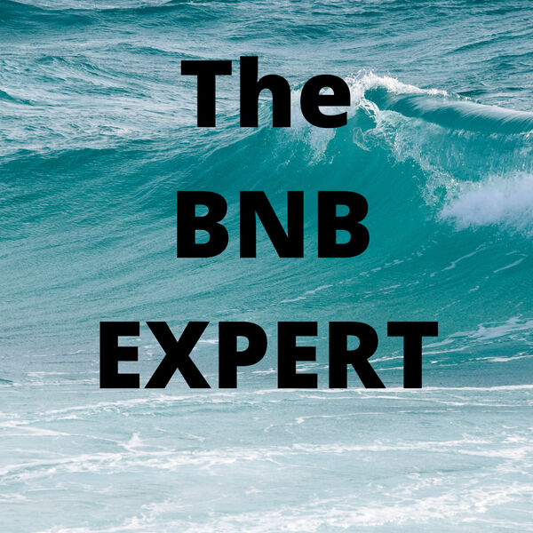 The BnB Expert , Pattie Detwiler, BnB Specialists & Broker/Consultant Podcast Artwork Image