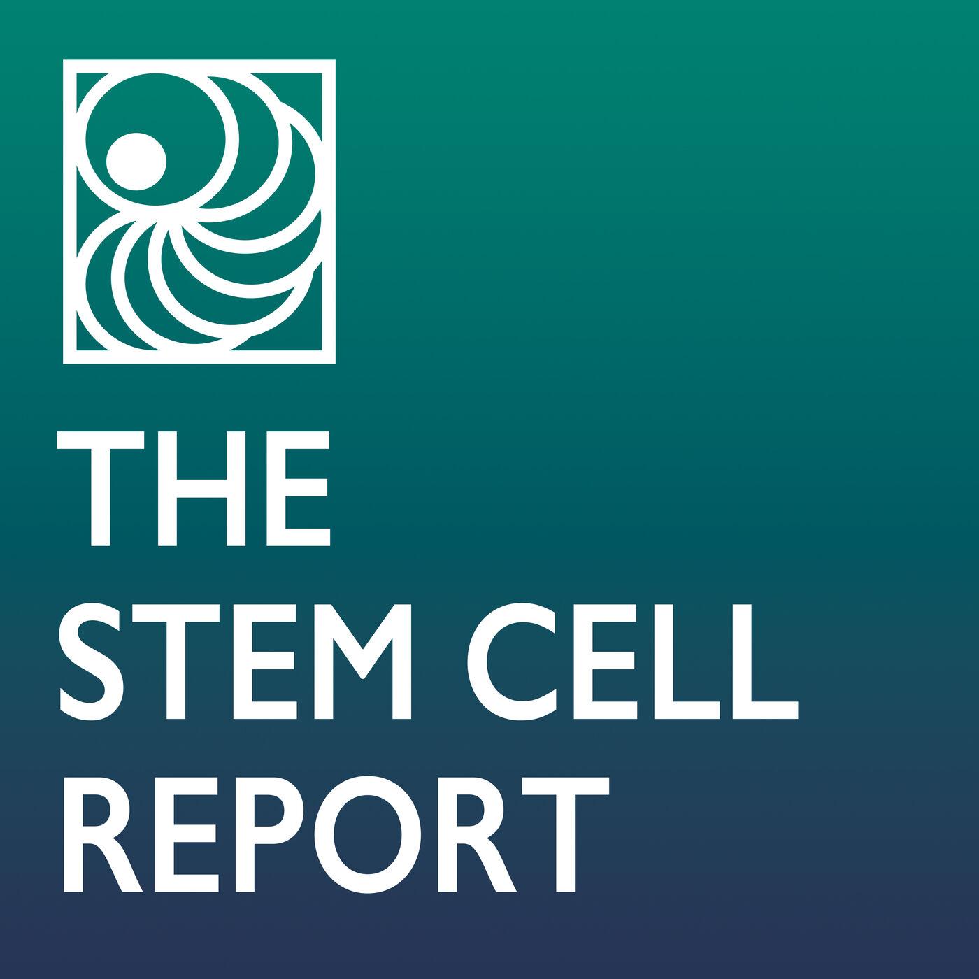 Blastoids, Gastruloids, and Stem Cell-Based Embryo Models