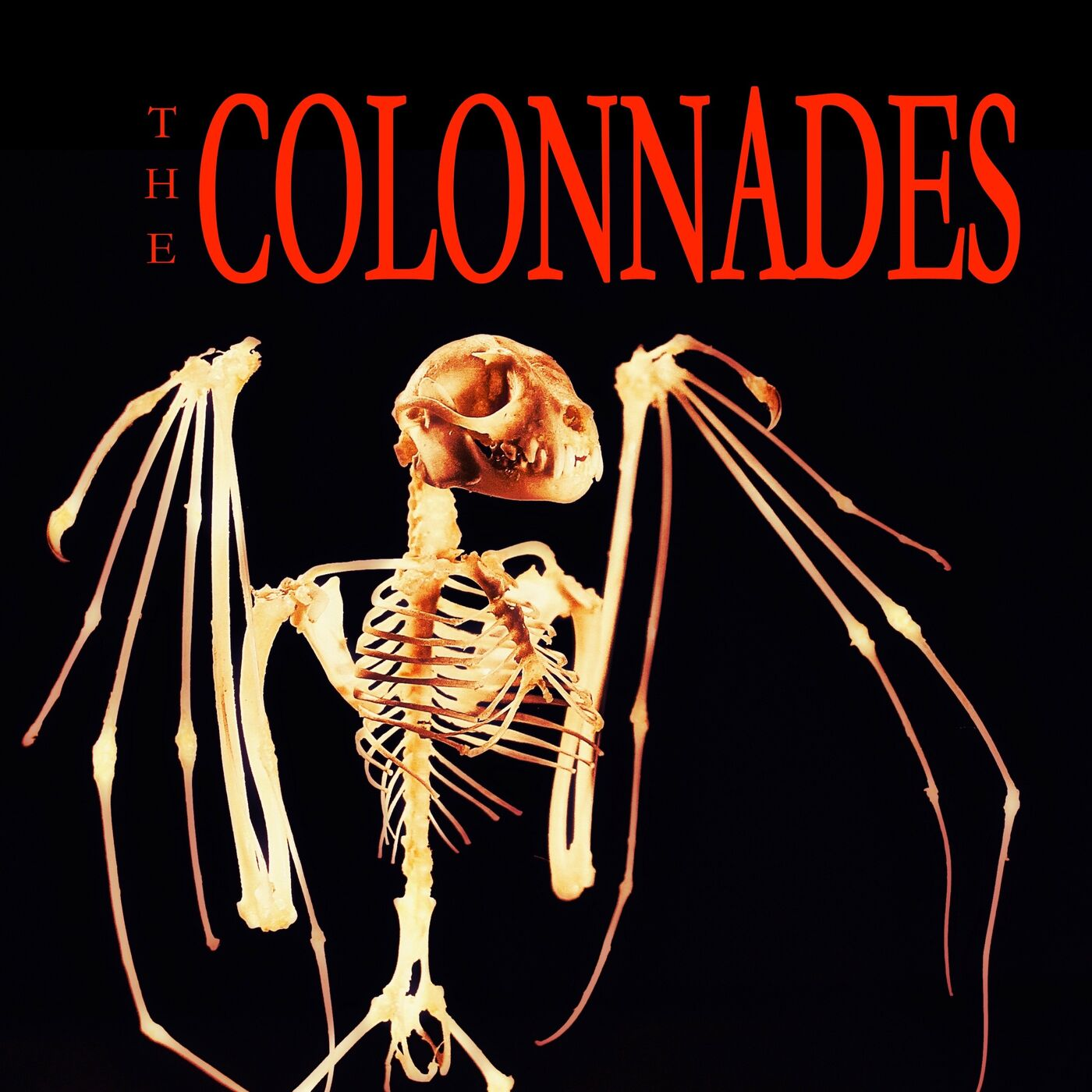 Chapter 9 The Colonnades