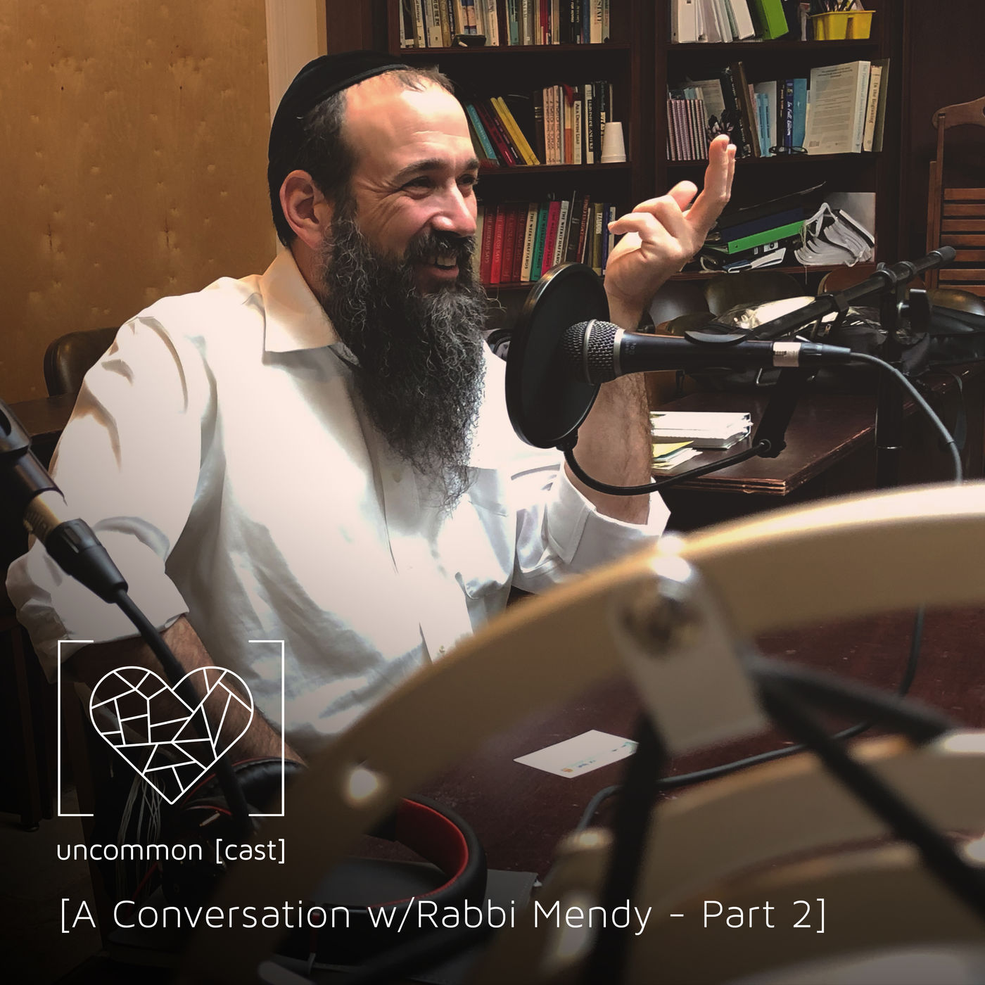 A Conversation with Rabbi Mendy - Part 2