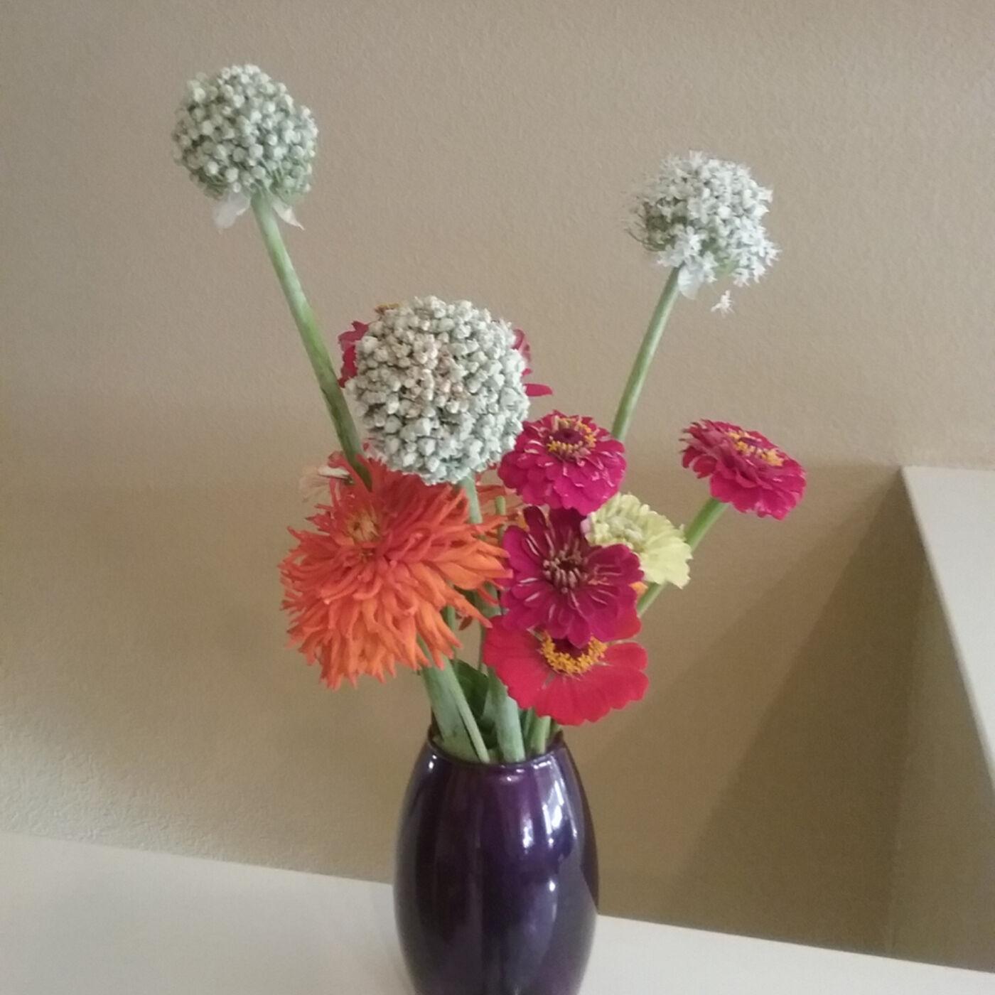 052 Cut Flower Basics. Winter Chicken Care.