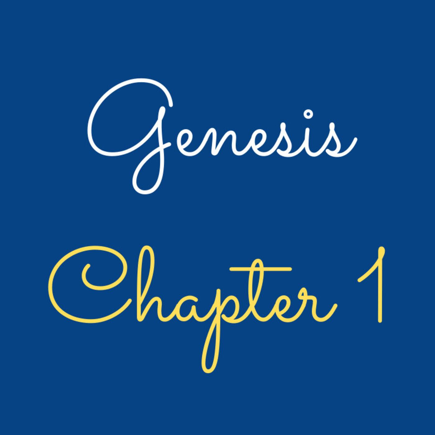 "Genesis 1 ""The Beginning"" - #46"