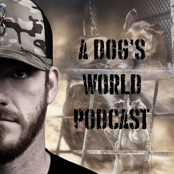 A Dog's World - Breaking The Chains Podcast Artwork Image