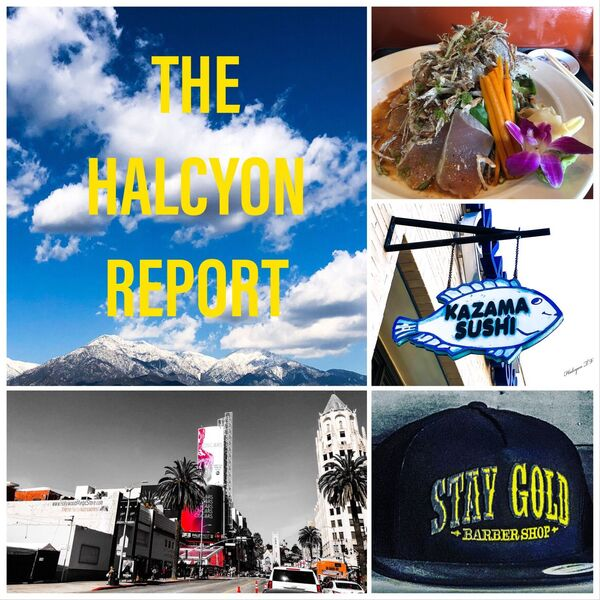 The Halcyon Report Podcast Artwork Image