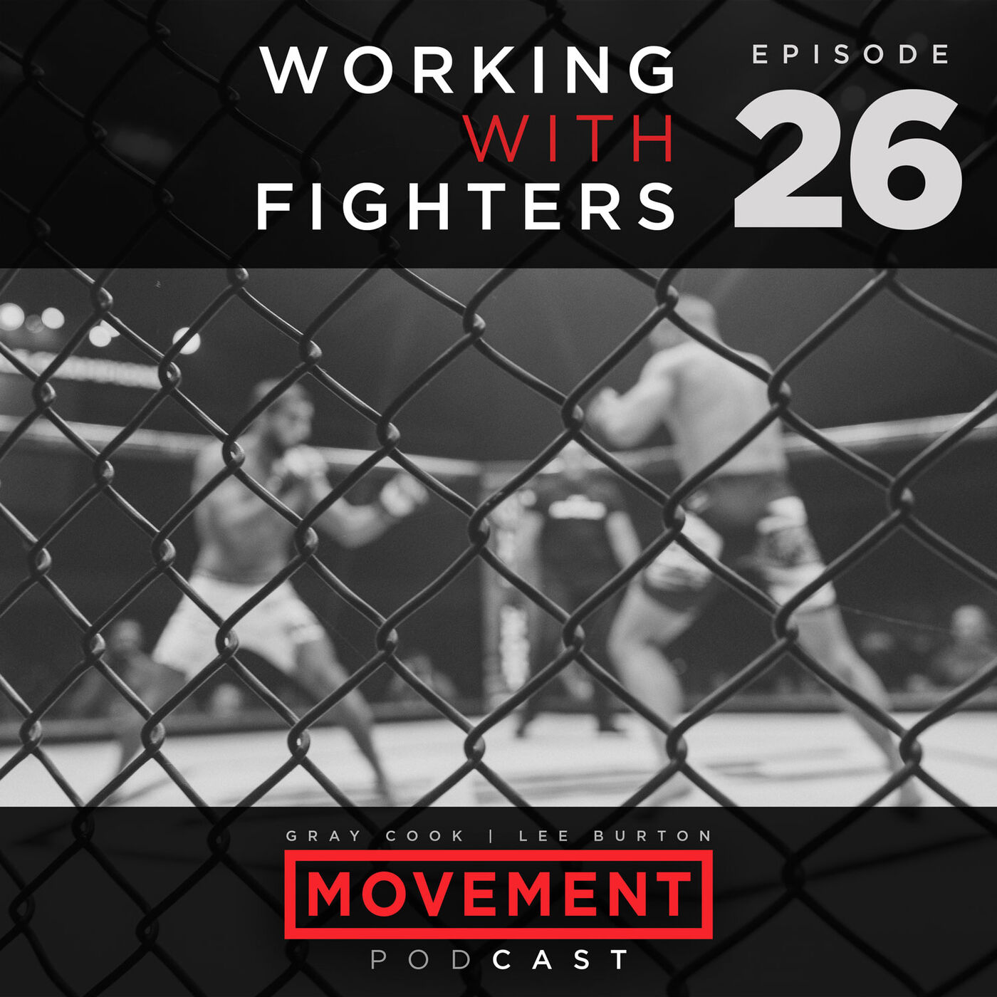 Working with Fighters