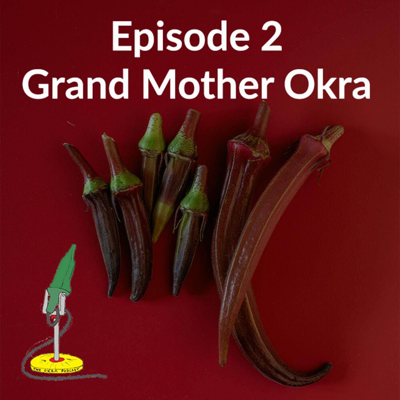 Grand Mother Okra (featuring Mehmet Oztan and Vivien Sansour)