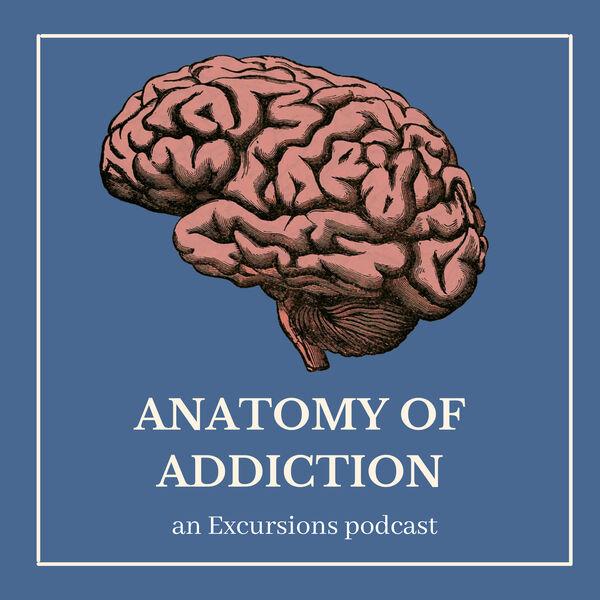 Anatomy of Addiction Podcast Artwork Image