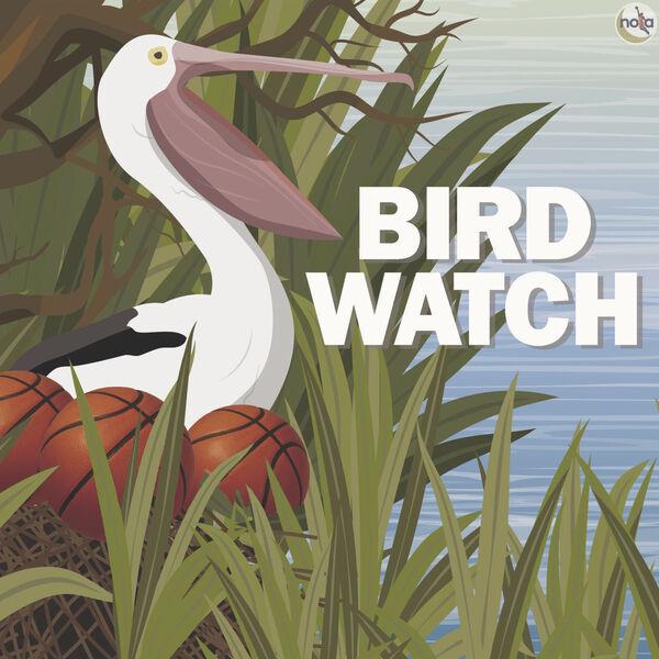 Bird Watch  Podcast Artwork Image