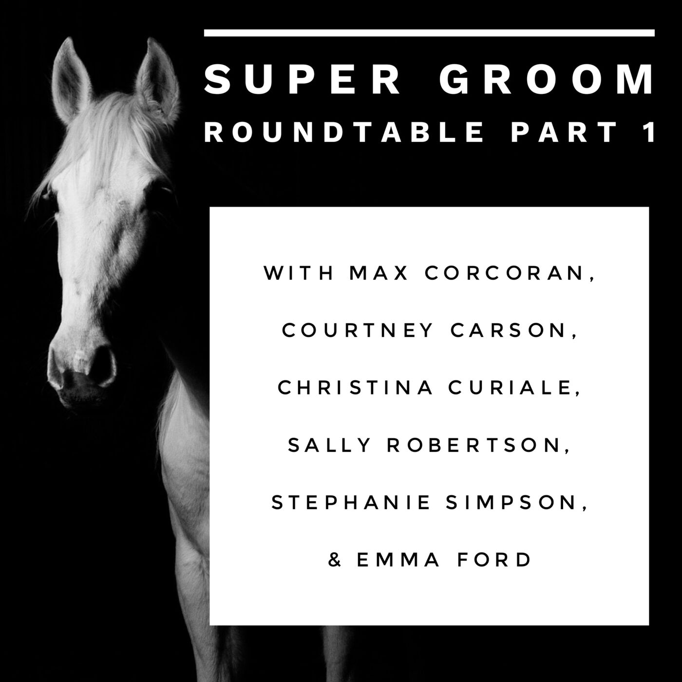 #142 Super Groom roundtable Part 1