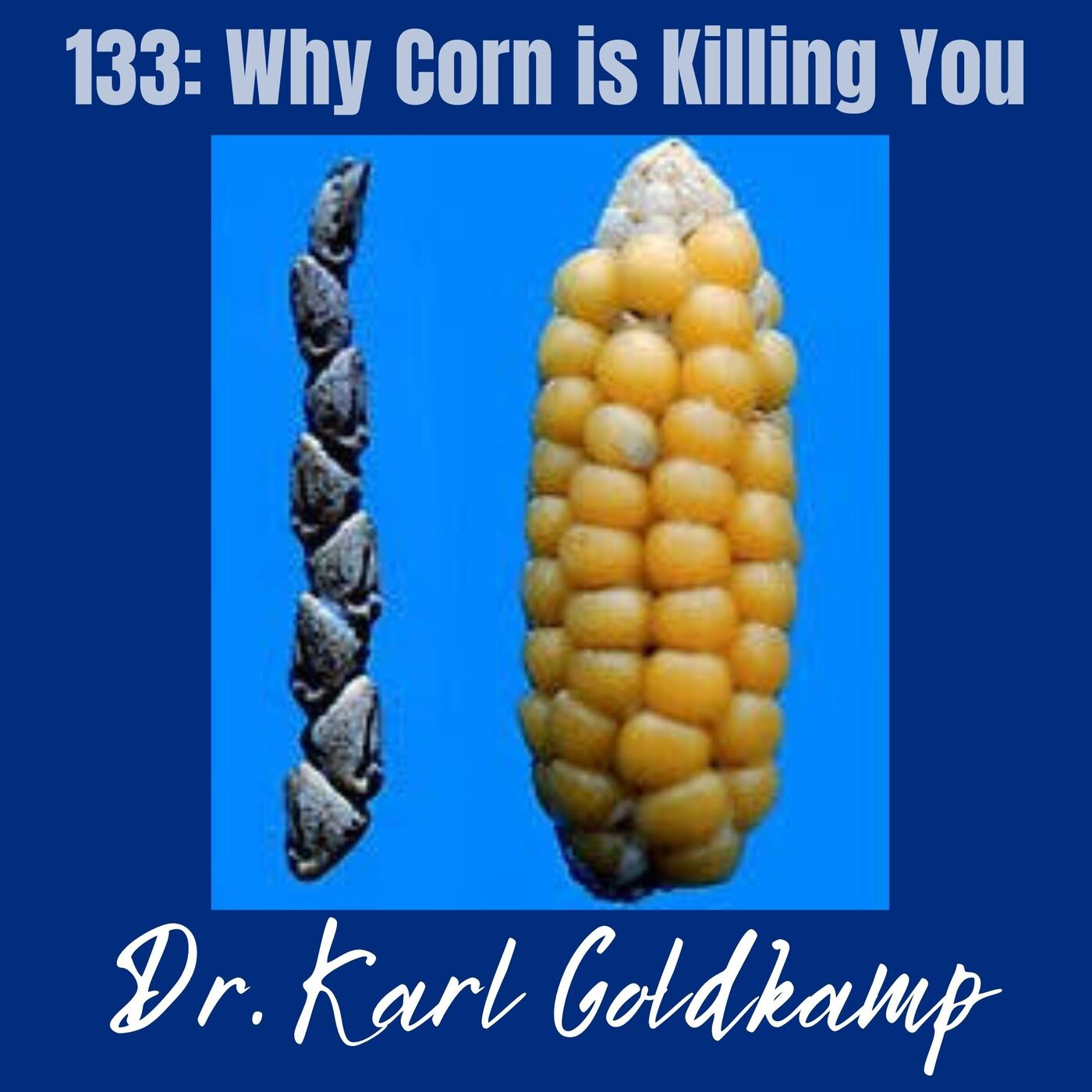 133: Why Corn is Killing You