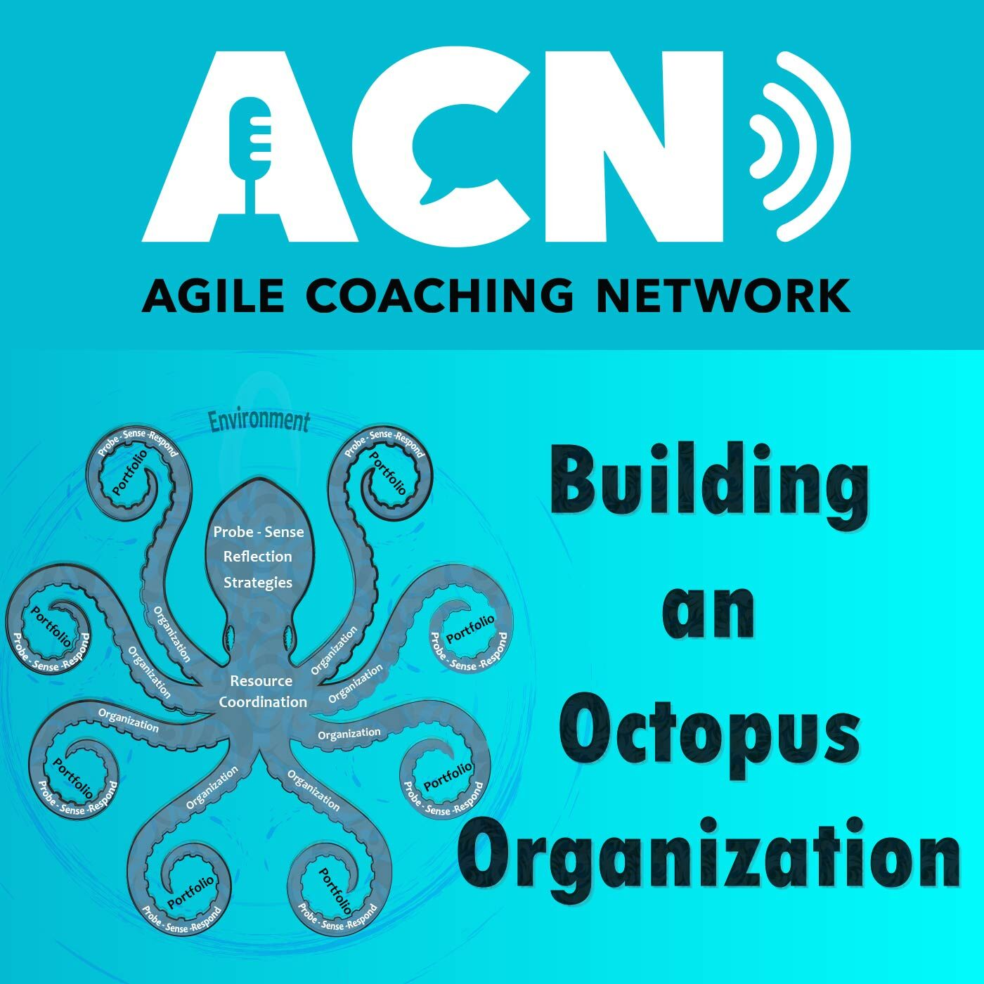 Building an octopus organization and supporting sustainability