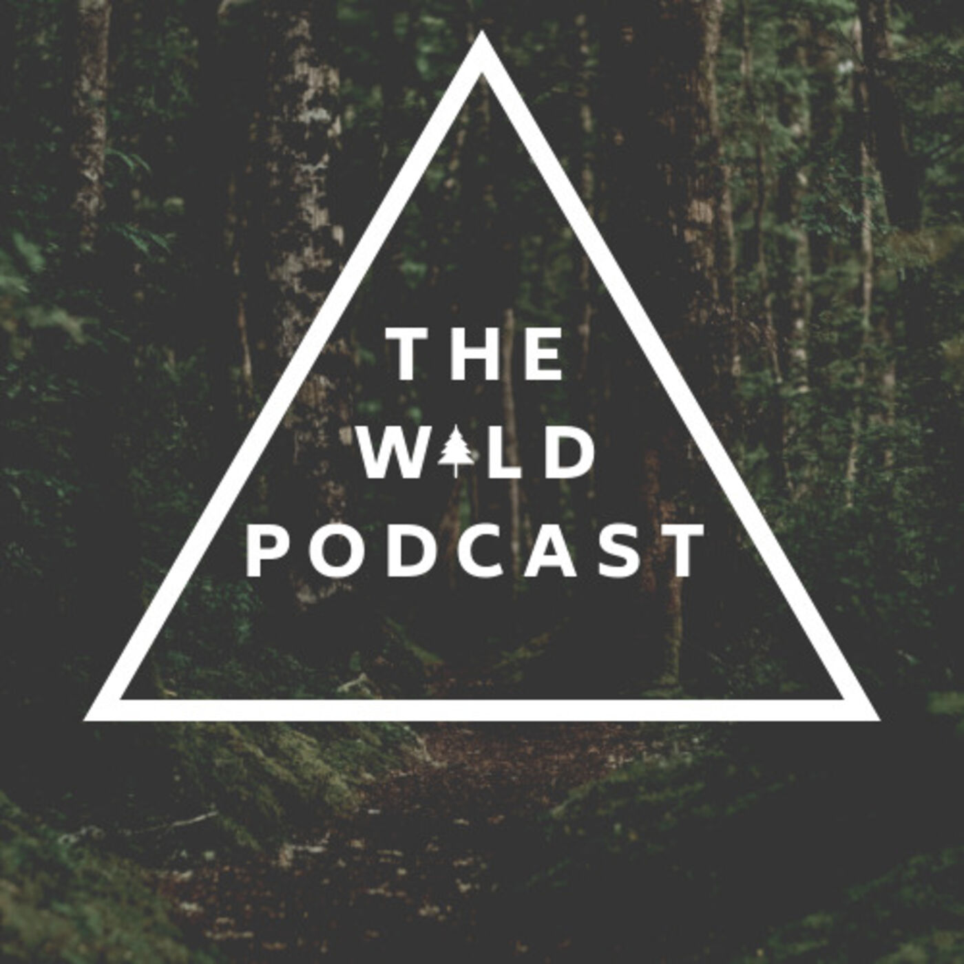 #22 Will Trubridge - Diving Into the Depths of Body & Mind