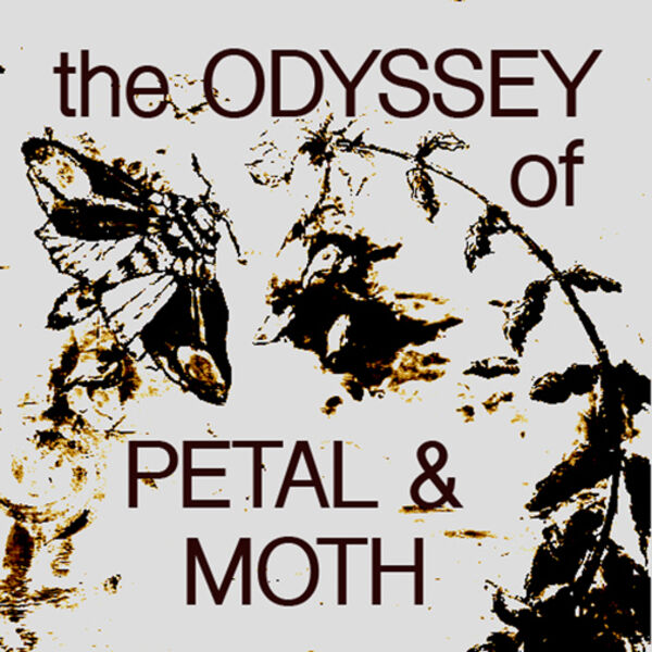 The Odyssey of Petal & Moth - tales from an underdog film Podcast Artwork Image