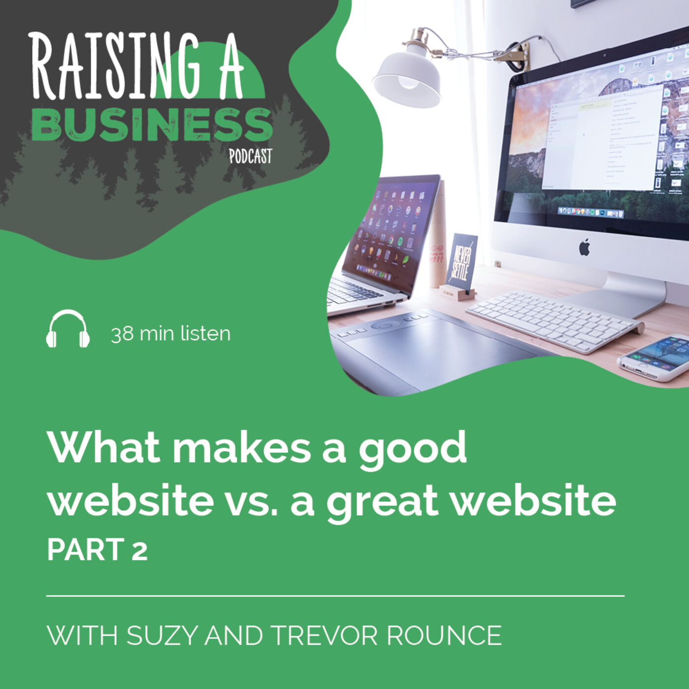 RAB 009 What makes a good website vs. a great website - part 2