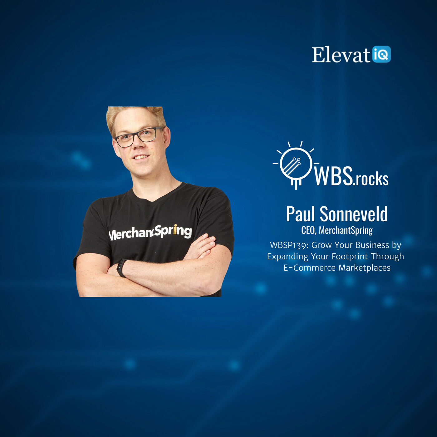 WBSP139: Grow Your Business by Expanding Your Footprint Through E-Commerce Marketplaces w/ Paul Sonneveld