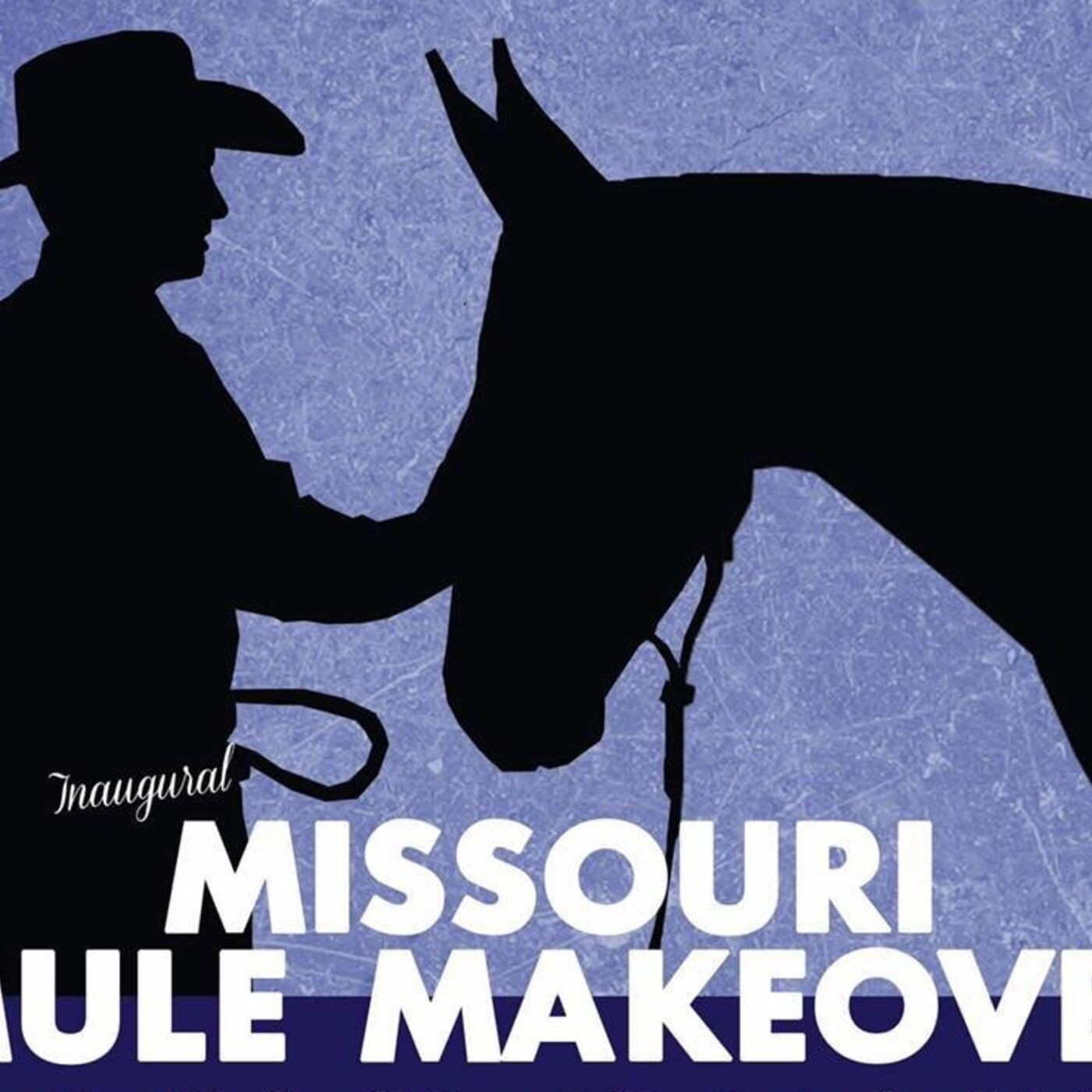 Les Clancy of Missouri Mule Makeover