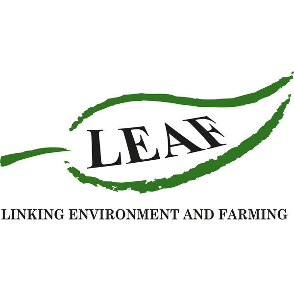 LEAFcast Podcast Artwork Image