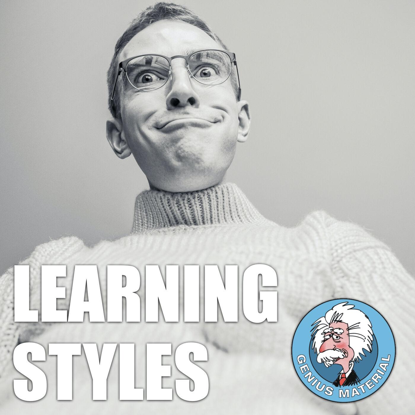 Learning Styles Hoo-Ha