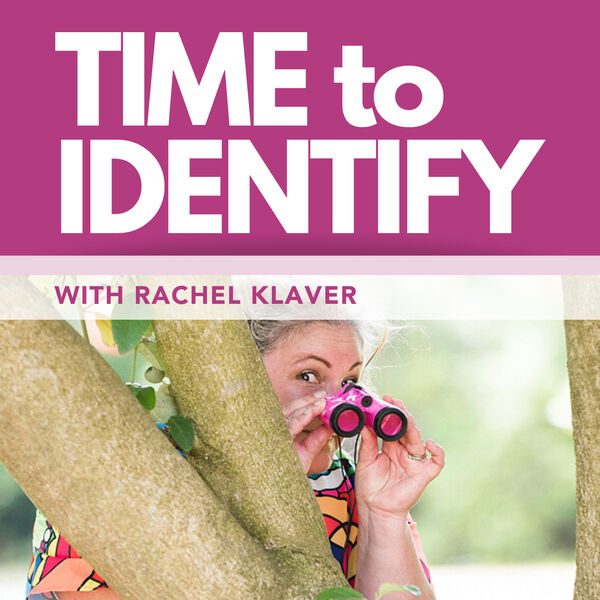 Time to Identify with Rachel Klaver Podcast Artwork Image