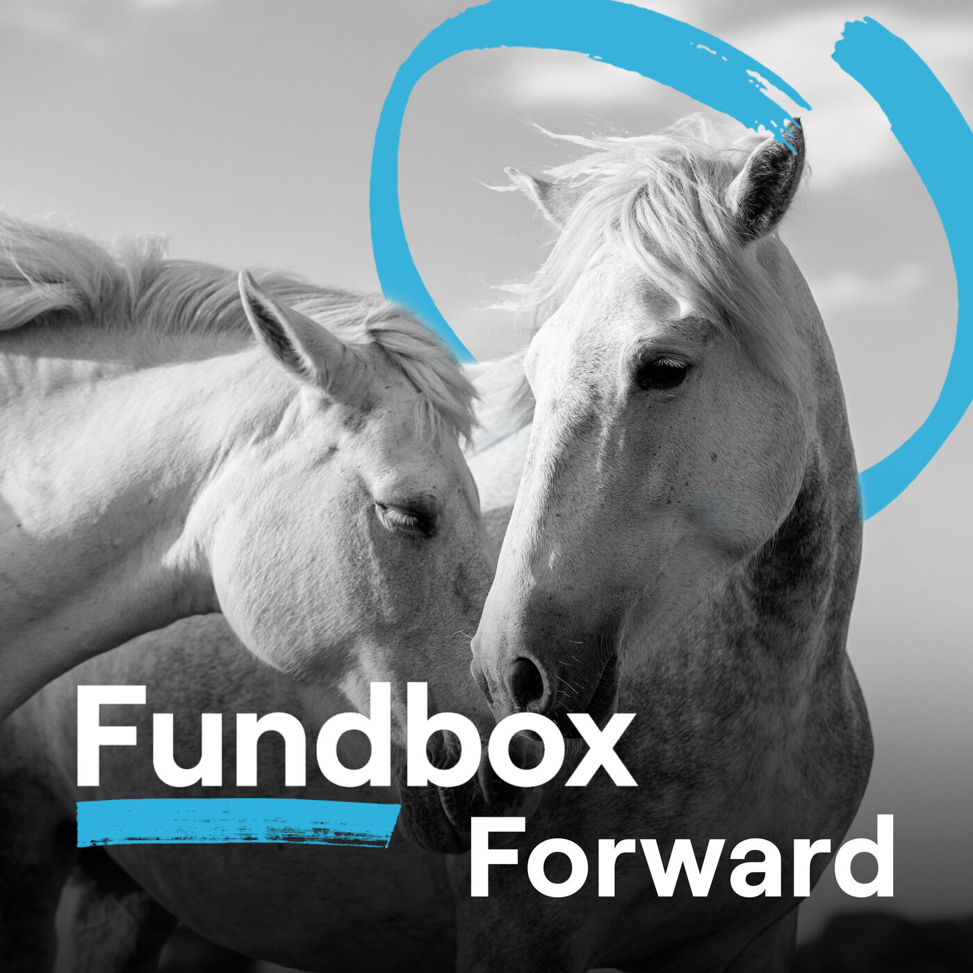 How a Horse Marketing Agency Pivoted During COVID Helped by Credit from Fundbox
