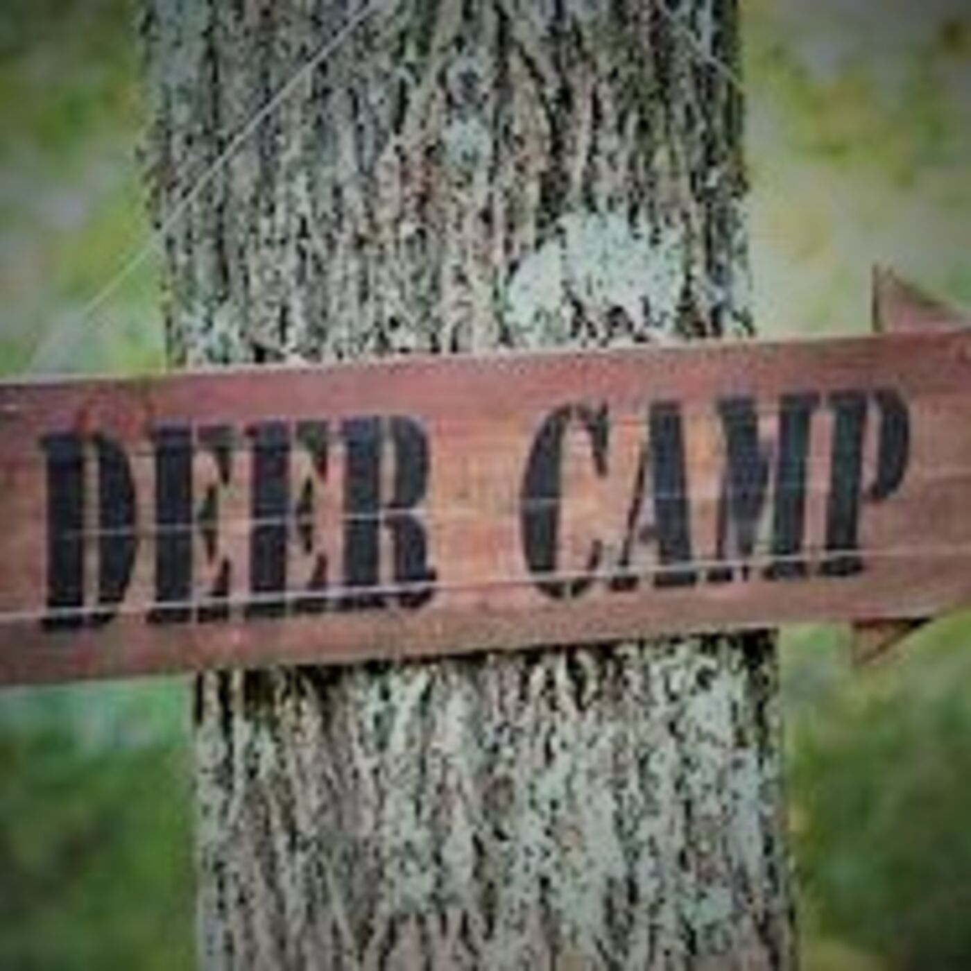 Deer Camp 2020 with Tim Rolen