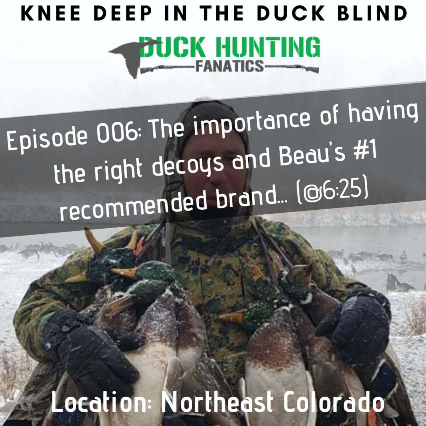 The Importance Of Having The Right Decoys - + Northeast Colorado Duck Report