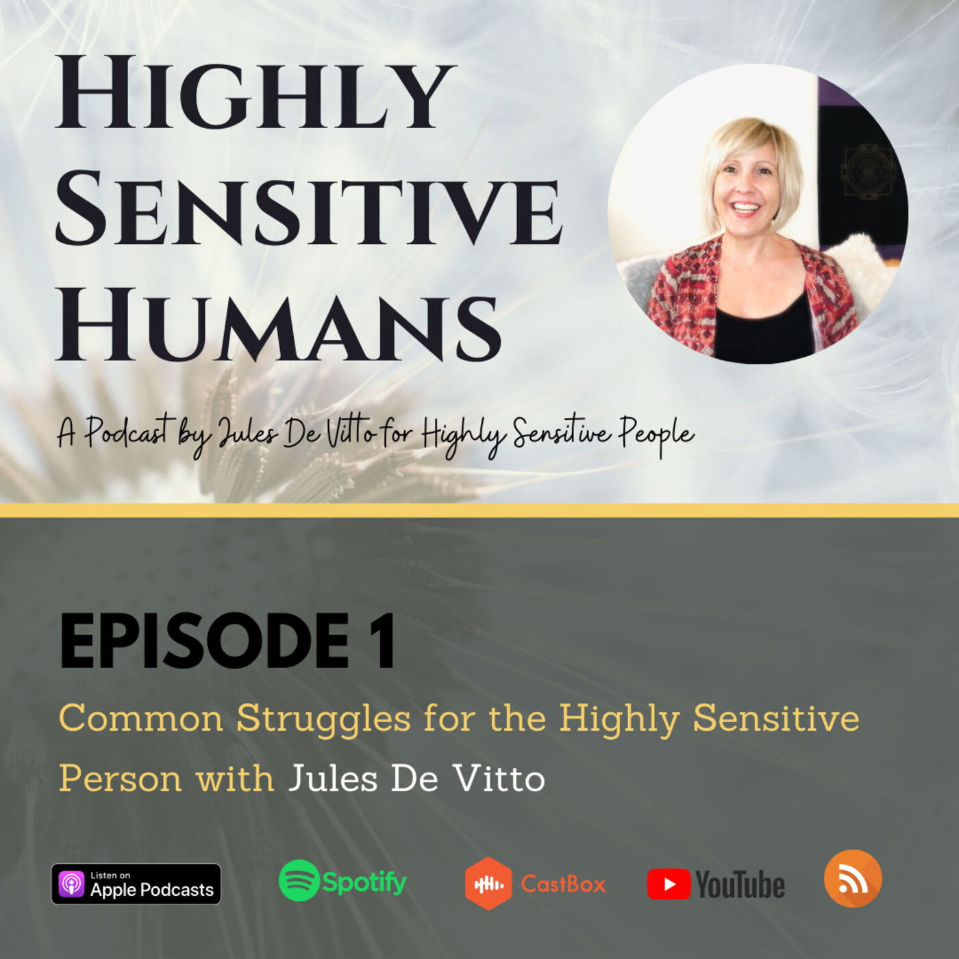 Common Struggles for the Highly Sensitive Person