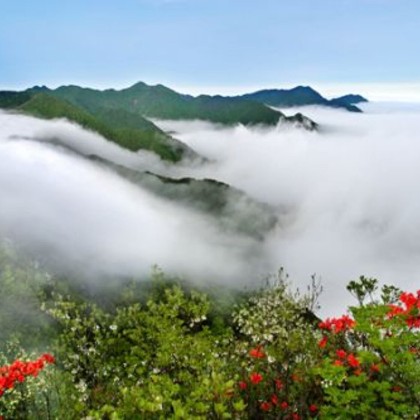 Background on Society and Economy in the Jinggang Mountains