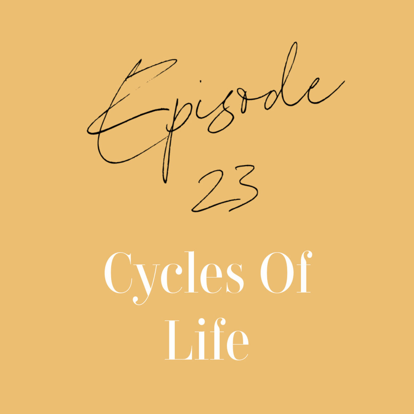Episode 23: Life Cycles