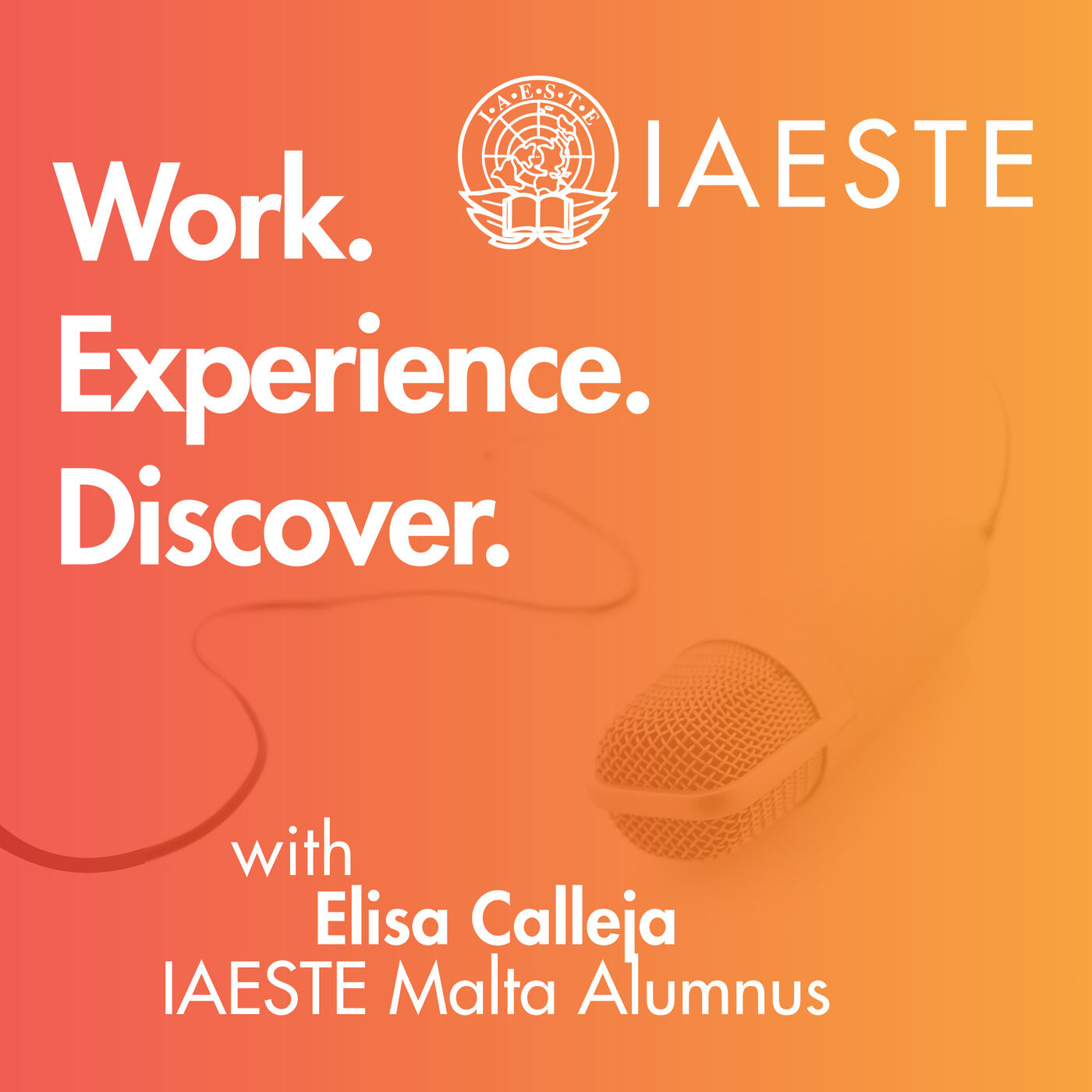 005 - The new IAESTE website! - A chat with Elisa Calleja