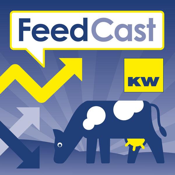 KW FeedCast Podcast Artwork Image