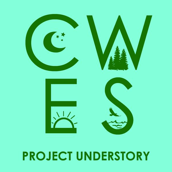 Project Understory Podcast Artwork Image