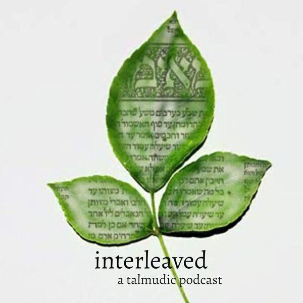 Interleaved: A Talmudic Podcast Podcast Artwork Image