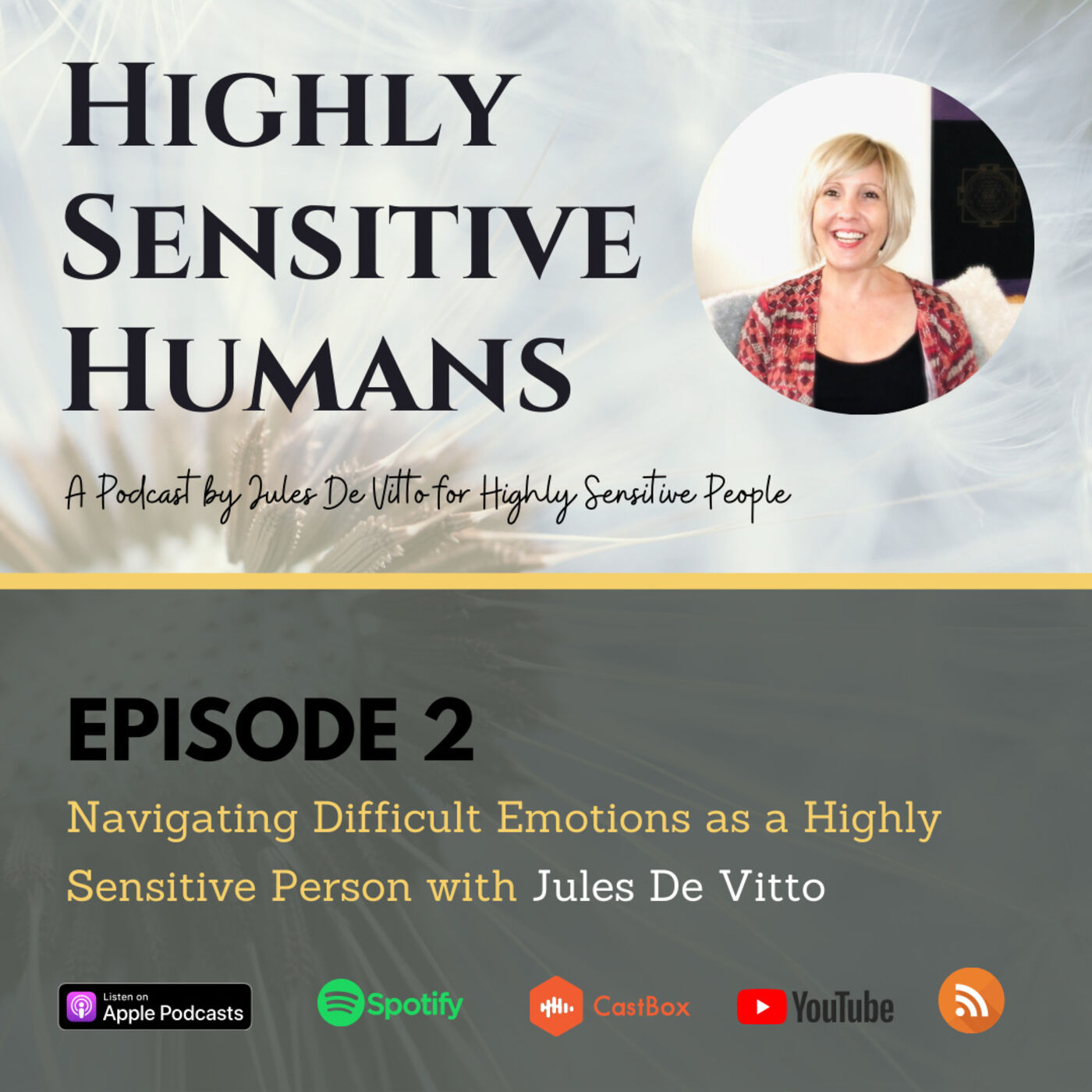 Navigating Difficult Emotions as a Highly Sensitive Person