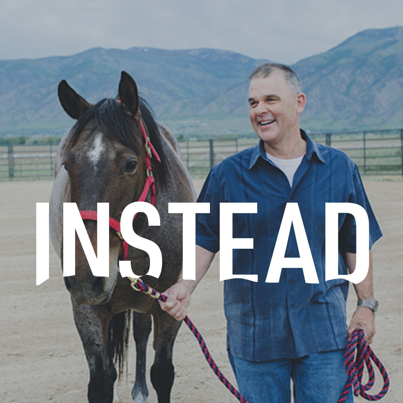 35– Horses & Veterans; judgement free help in the therapy arena with, Judy Smith
